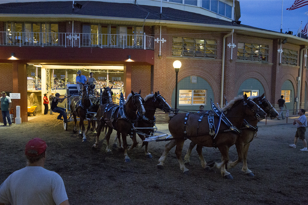 A six-horse hitch leaves the Coliseum after the draft horse class Monday, Aug. 17, 2015 at the Illinois State Fair. Rich Saal/The State Journal-Register