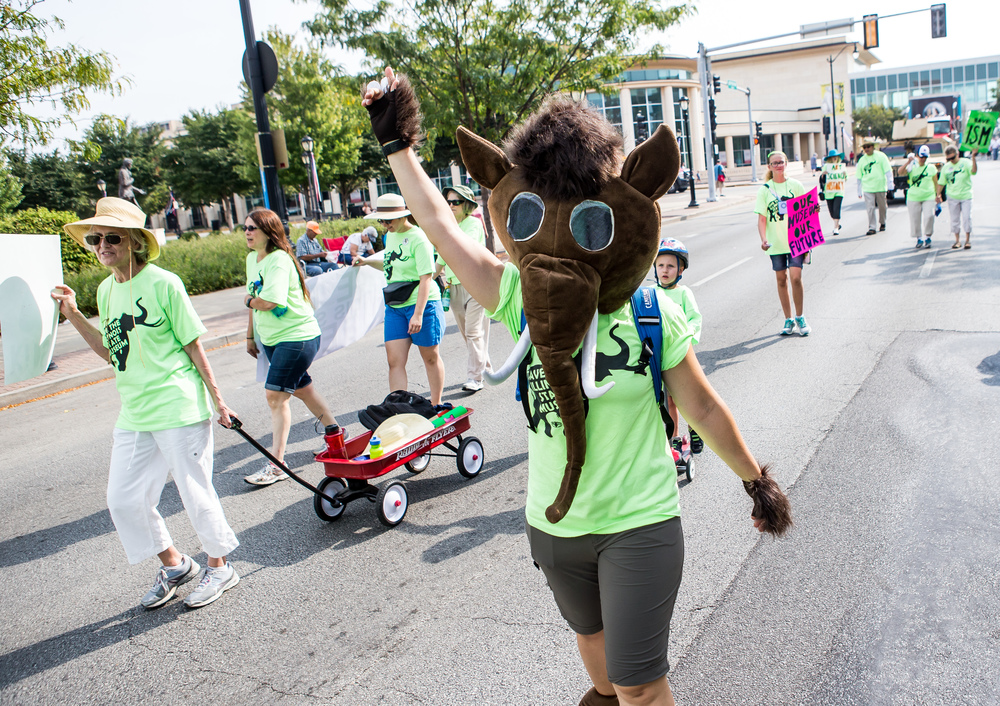 "Megan Mammoth, dressed as a woolly mammoth, marches with a group advocating to save the Illinois State Museum during the annual Labor Day Parade, Monday, Sept. 7, 2015, in Springfield, Ill. ""It's incredibly important to our community and our state,"" said Mammoth of marching to save the Illinois State Museum. Justin L. Fowler/The State Journal-Register"