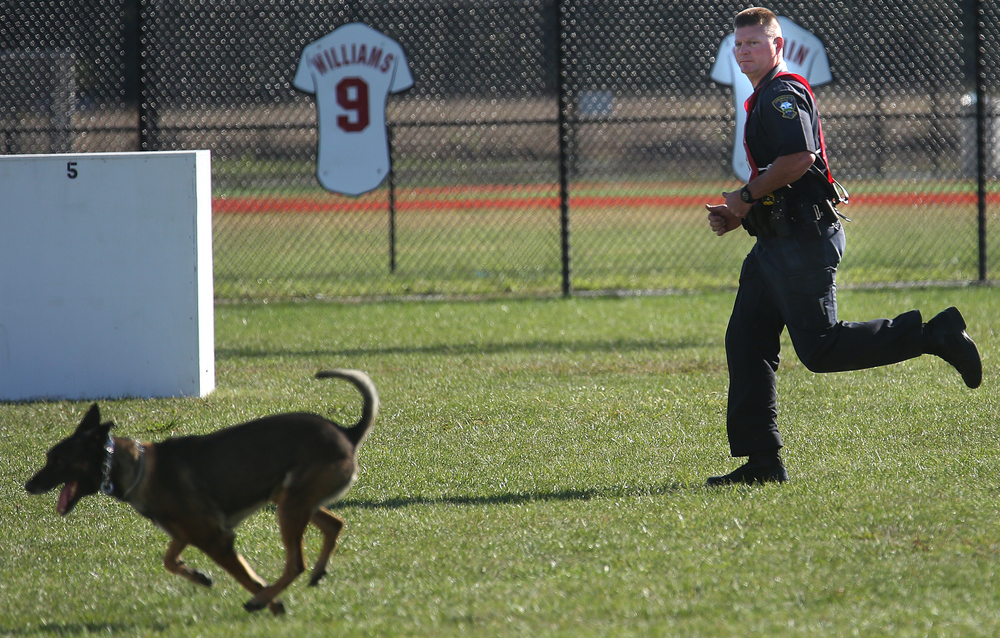 "Springfield Police officer Ryan Machin stays close in the background as K-9 partner ""Arko"" runs the course while smelling out a box suspect at Spartan Sports Park Tuesday morning .  David Spencer/The State Journal-Register"