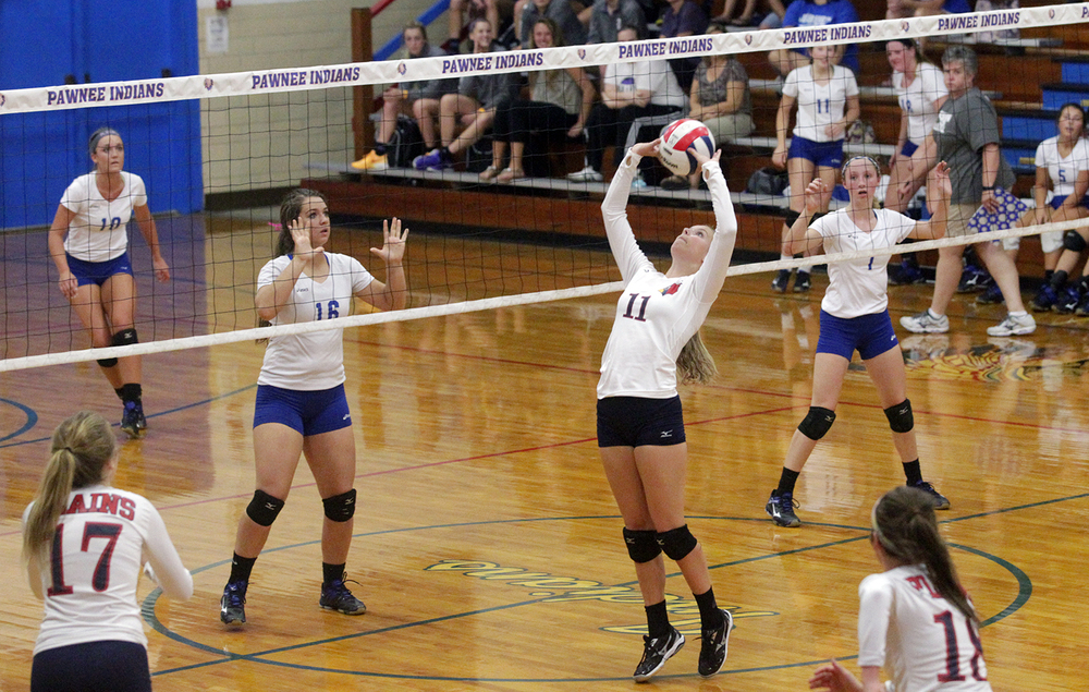 Pleasant Plains' Shelby Craven sets the ball against Auburn during the Sangamon County Volleyball Tournament Monday Sept. 28, 2015. Ted Schurter/The State Journal-Register