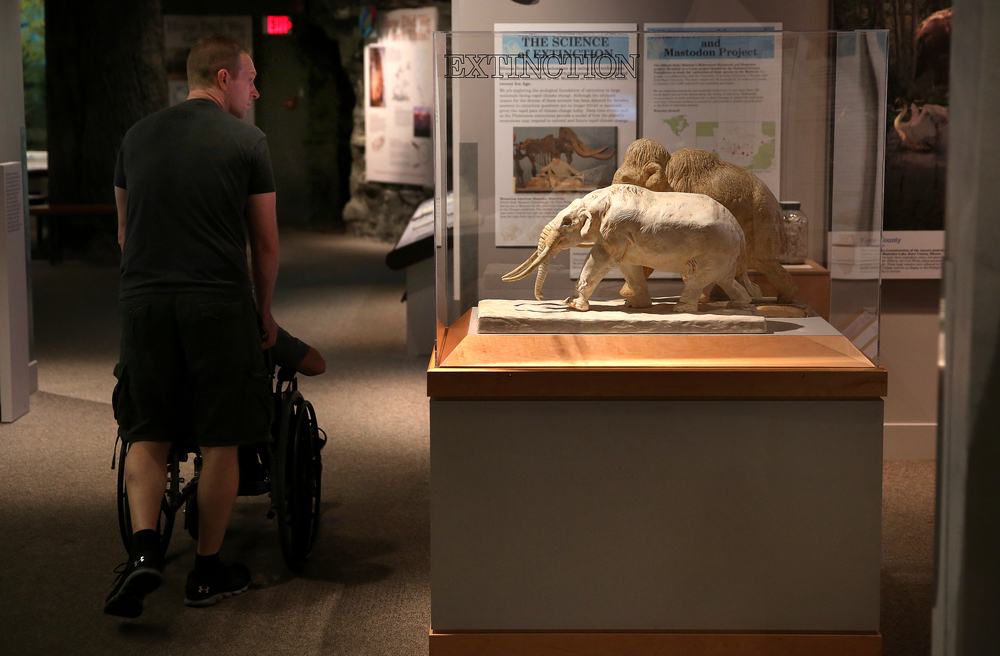 John Alt of Springfield wheels son Isaac Alt in his wheelchair through the first floor natural history display area on Wednesday, which includes a display case at center of the extinct Woolly mammoth and Mastodon. David Spencer/The State Journal-Register