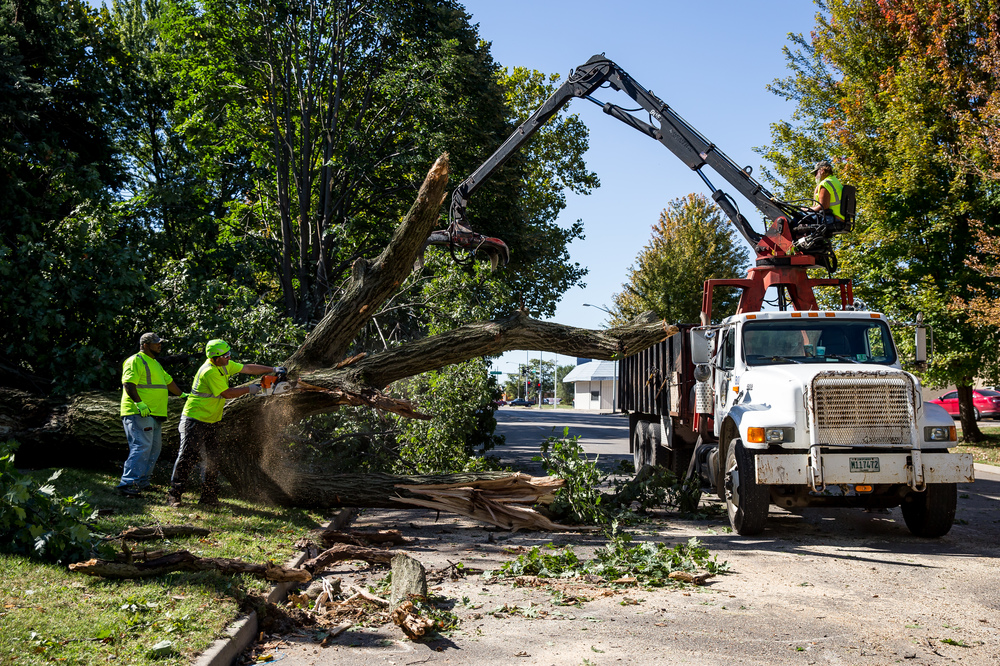 Myron Page, left, and Terry Barnard, right, both foreman for Springfield Public Works, take down a large portion of a tree that collapsed in the 800 block of West Jefferson Street completely blocking the roadway, Wednesday, Sept. 30, 2015, in Springfield, Ill. Justin L. Fowler/The State Journal-Register