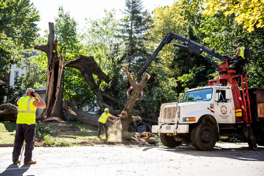Terry Barnard, a foreman with Springfield Public Works, uses a chainsaw to split up a large section of a collapsed tree on the 800 block of West Jefferson Street, Wednesday, Sept. 30, 2015, in Springfield, Ill. Nobody was working on the tree at the time it collapsed causing the closure of the roadway. Justin L. Fowler/The State Journal-Register