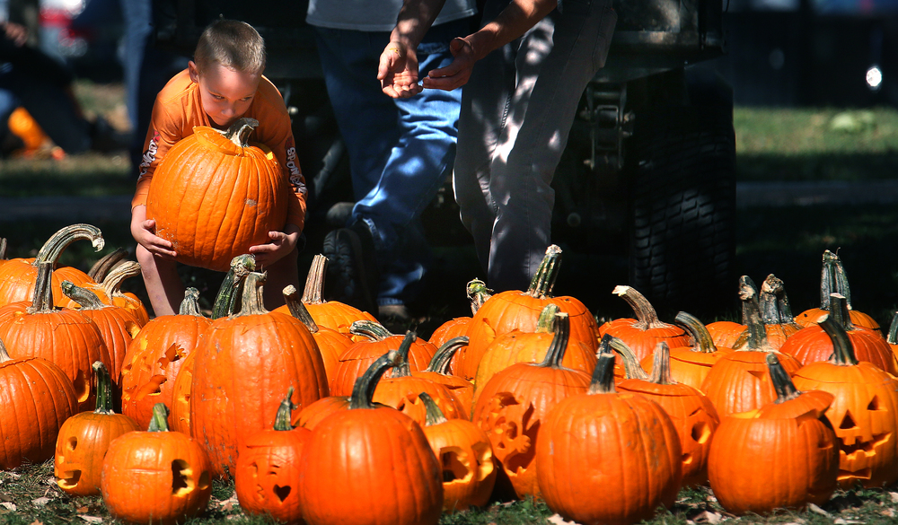 Ethan Farley-Browder, 7, of Springfield was briefly assisting park district employees in transporting freshly-carved pumpkins to a nearby atv where they would be transported to a larger trailer for storage until being put on display during the Jack-O-Lantern Spectacular next weekend. David Spencer/The State Journal-Register