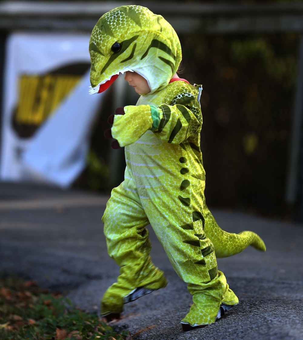 Some little ones, including 16-month-old Dakota Hemphill of New Berlin, who dressed up Sunday as a Tyrannosaurus Rex, could not seem to stand still even for a moment. David Spencer/The State Journal-Register