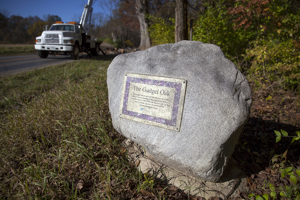 A plaque that has marked the location of the Gudgel Oak in Menard County will be updated now that the tree has been cut down. Rich Saal/The State Journal-Register