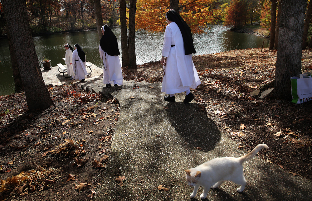 Some of the six nuns who made their weekly pilgrimmage to visit their future home head down to view the lake on Sunday, Oct. 25, 2015. Thomasina the cat, who came with the 34-acre property, waits at the top of the path. Last year, 14 Dominican nuns belonging to the Monastery of Mary the Queen translocated from Elmira, N.Y. to Springfield and are living 
