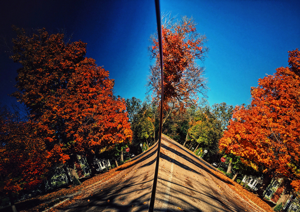The fall foliage along Williams Boulevard makes for colorful pallets reflected in the windows of a passenger vehicle parked along the road, Thursday, Oct. 29, 2015, in Springfield, Ill. Justin L. Fowler/The State Journal-Register