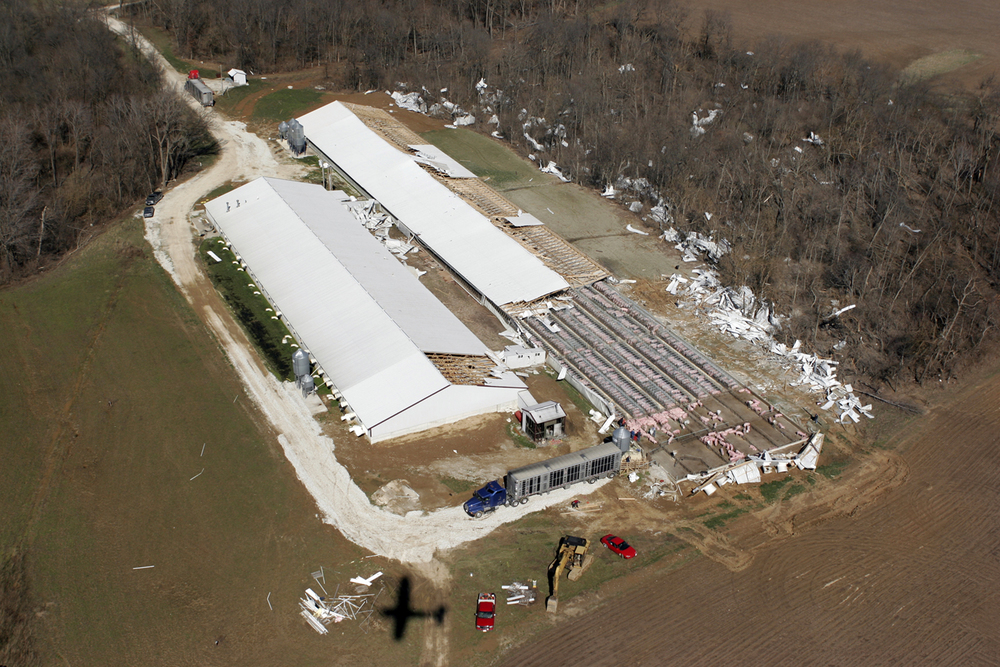 The roof of a large hog operation west of Springfield was torn off by the tornado.Ted Schurter/The State Journal-Register