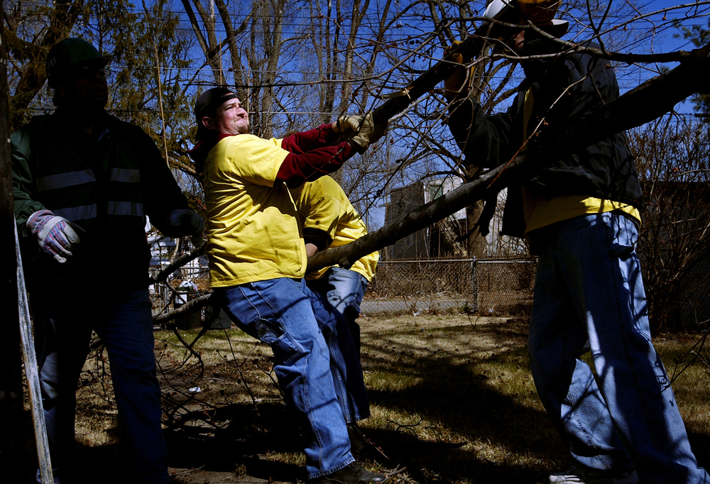 Litchfield resident Eric Lamb works with other volunteers from The Church of Jesus Christ of Latter Day Saints and Community Emergency Response Team workers to dislodge a downed limb from a tree in a backyard on Pine Street Saturday, March 18, 2006. File/David Albers/The State Journal-Register