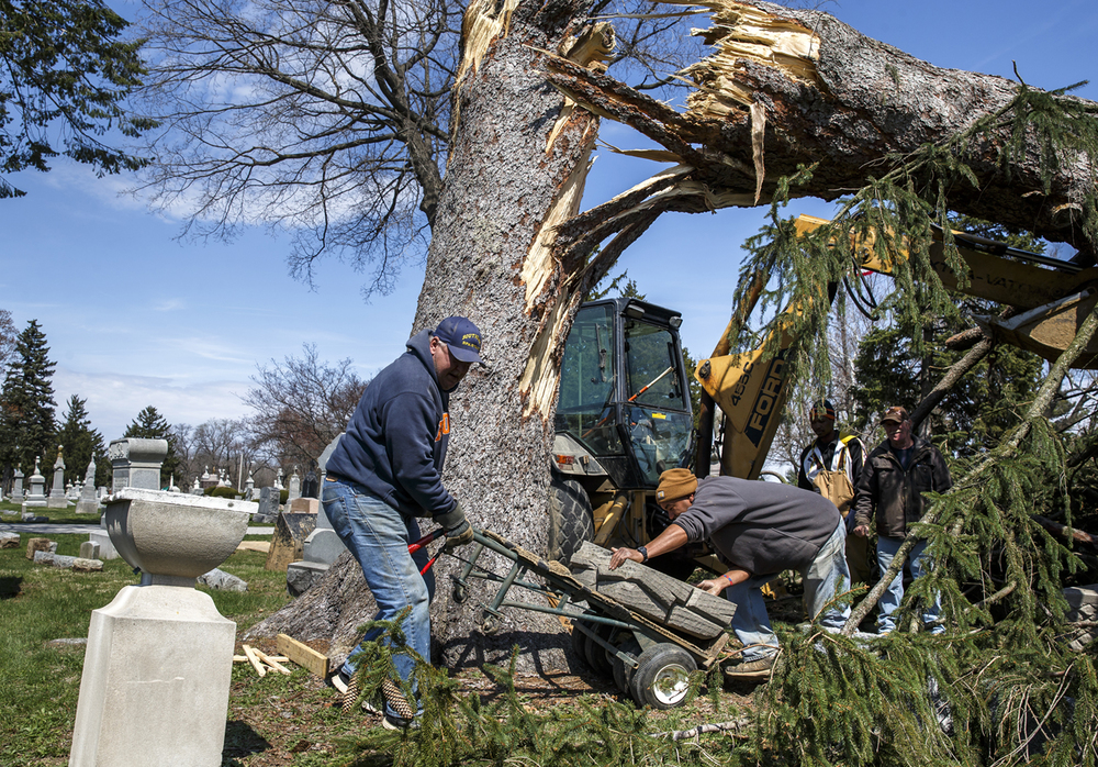 Dan Stroble, left, and James Brashers, right, use a hand cart to move a headstone from underneath a fallen pine tree to protect it from damage while the tree is cut down in Calvary Cemetery, Tuesday, April 5, 2016, in Springfield, Ill. The tree was blown down during a high wind event on Saturday with a reported high gust of 62 m.p.h. in Springfield recorded by the National Weather Service in Lincoln. Justin L. Fowler/The State Journal-Register