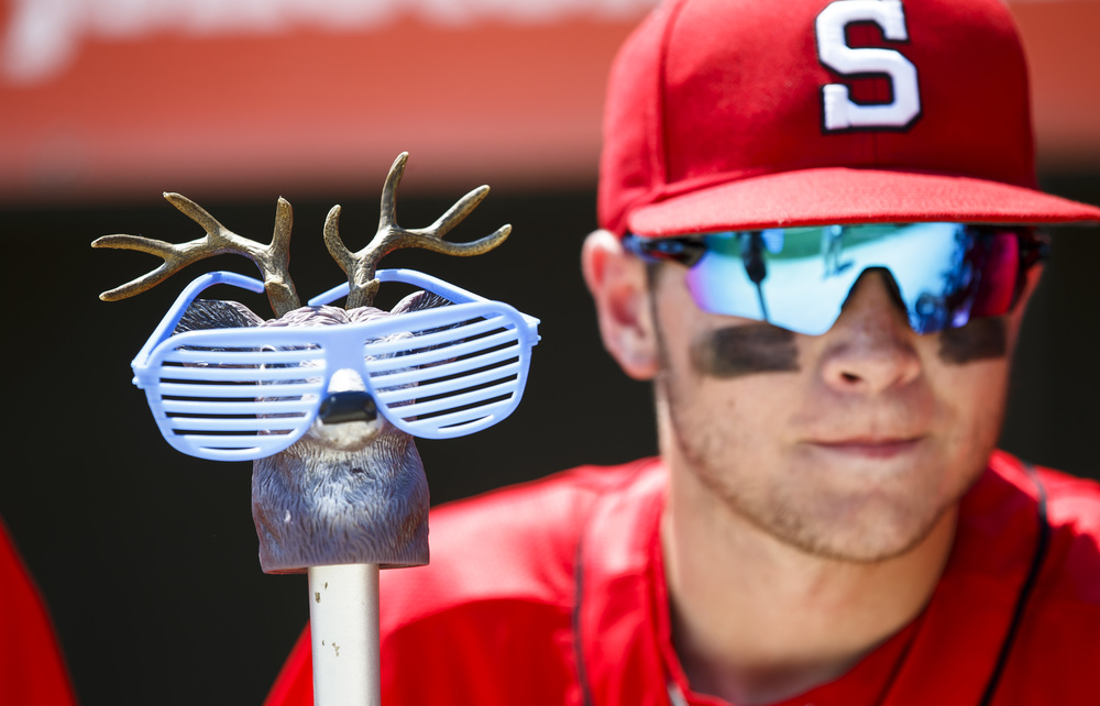 "Springfield's Devin Frasco (16) looks after ""Roger"" as he sports a set of plastic glasses given to the players by the hotel they stayed at prior to taking on Lemont in the IHSA Class 3A State Tournament Championship at Silver Cross Field, Saturday, June 11, 2016, in Joliet, Ill. The Senators used two deer heads on baseball bats after sectionals as good luck rally charms that were named Roger and Daryl. Justin L. Fowler/The State Journal-Register"