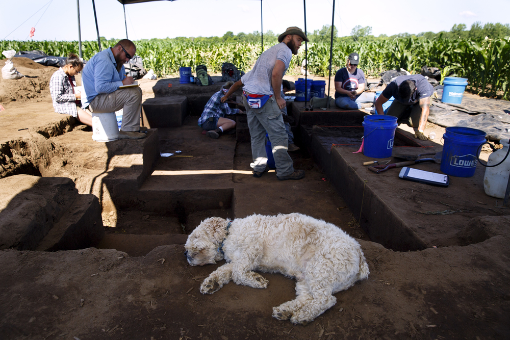 The archeological team, including Oscar, the project's mascot, at the Cass County site June 7, 2016. Rich Saal/The State Journal-Register