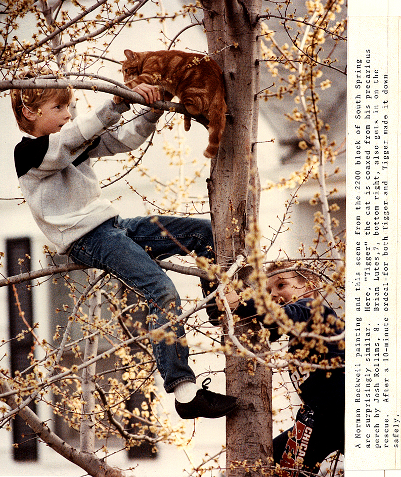 Drama in the 2200 block of South Spring street-appropriately taken in the Spring of 1990- has eight-year-old local resident Josh Rollins coming to the rescue while saving Tigger the cat who had somehow scampered up a tree. Read my original cutline at right. David Spencer/The State Journal-Register