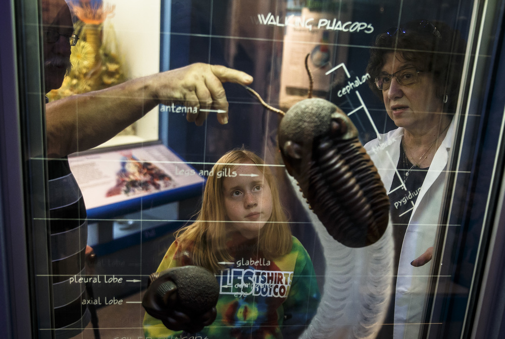 "Alise Parkhill, center, learns about trilobites with her grandfather, Mike Parkhill, left, and volunteer Deborah Mueth, right, while visiting the Illinois State Museum for the reopening, Saturday, July 2, 2016, in Springfield, Ill. ""She was constantly asking me is it the 2nd yet,"" said Mike Parkhill about his granddaughters anticipation of museum's reopening after being closed for nine months. Justin L. Fowler/The State Journal-Register"