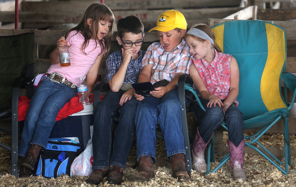 "Children amused themselves playing a video game during the Junior Sheep Show judging at the fairgrounds on Wednesday morning, July 6, 2016. The Macoupin County Fair in Carlinville, which opened on Tuesday and runs through this Saturday, traces its' history back 164 years to 1852, when the Agricultural, Horticultural and Mechanical Association of Macoupin County first held a ""meet"" on the Carlinville public square showcasing area livestock. In addition to a carnival, food and childrens activities, highlights Thursday night include a Junior Livestock Auction and mud racing; Friday night features a Tractor and Truck Pull and Saturday showcases a Western Horse Show during the day and demolition derby at night. David Spencer/The State Journal-Register"