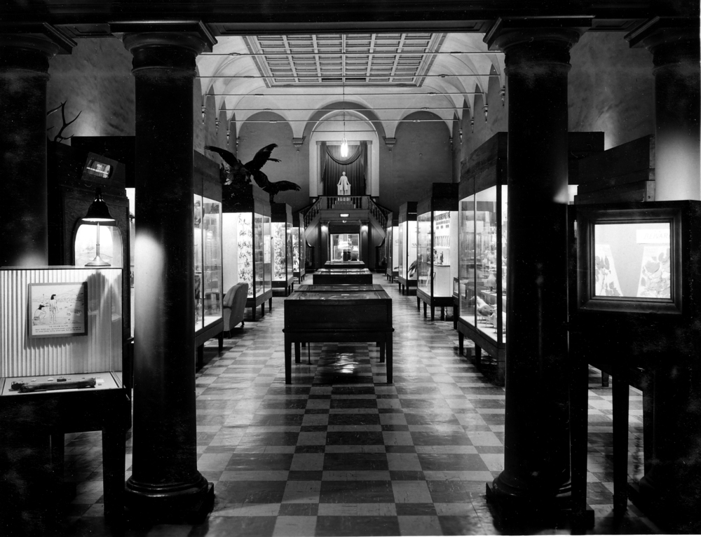 Illinois State Museum, Centennial Building. Photo courtesy Illinois State Museum