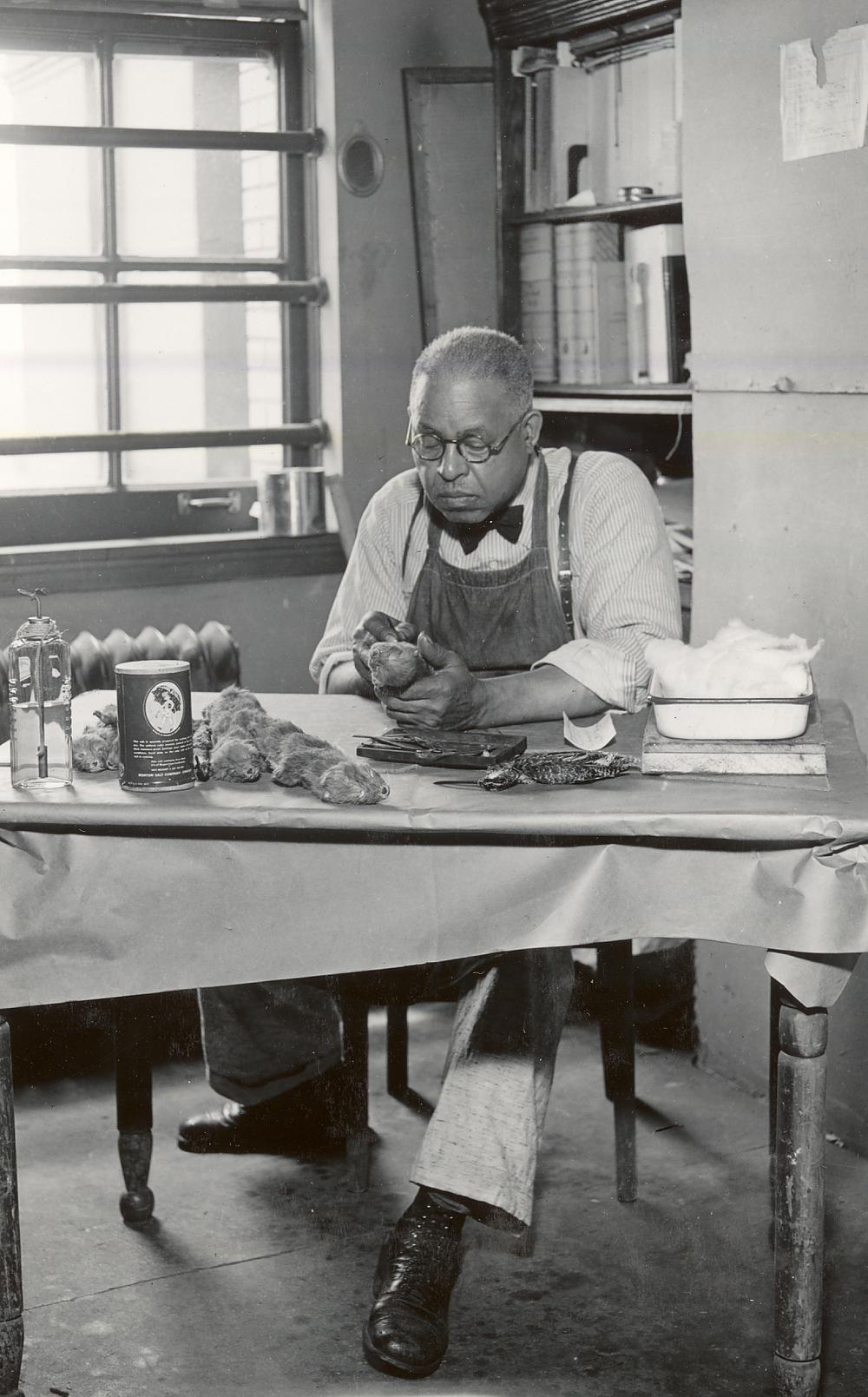 Robert Taylor of the exhibit construction team, Centennial Building circa 1950s. Photo courtesy Illinois State Museum.
