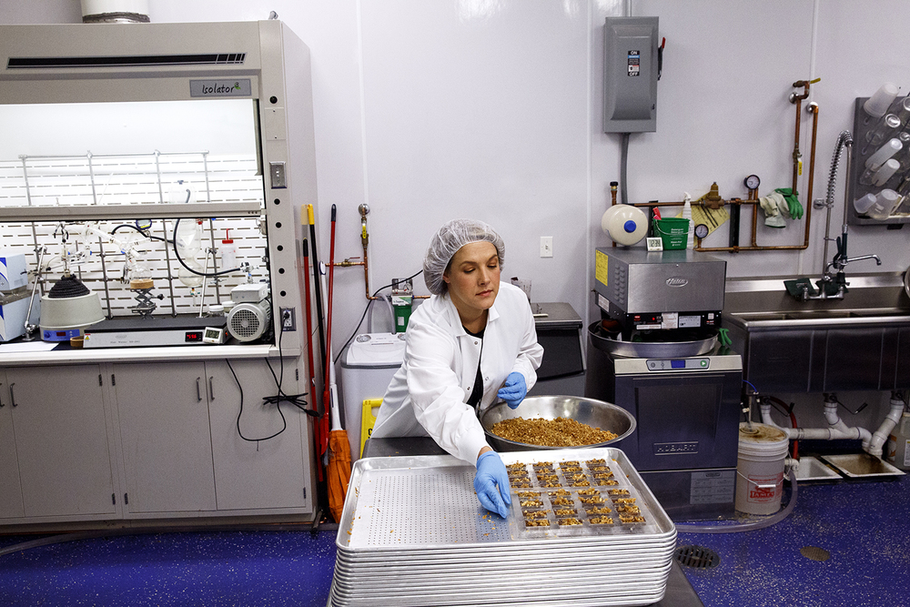 Lisa Kamerad, edibles general manager, finishes chocolates infused with cannabis oil at Cresco Labs' medical marijuana cultivation center in Joliet Wednesday, Aug.10, 2016. Rich Saal/The State Journal-Register