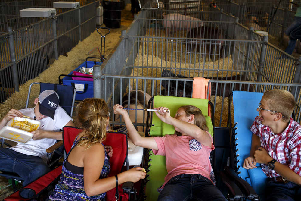 Madison Rensing catches her brother Dylan off guard, tickling his ear with a show stick in the Swine Building at the Illinois State Fair Saturday Aug. 13, 2016. Watching are their cousins Haley Rensing and Riley Hubert. Rich Saal/The State Journal-Register