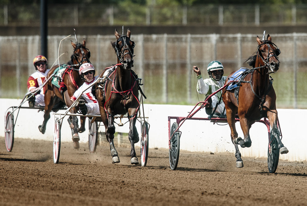 PJ Boy, driven by Ridge Warren, comes up on the outside of Primed N Powerful, driven by Freddie Patton Jr., to take home the victory in the Illinois State Fair Colt Stakes Championship Three Year Old Colts & Geldings during harness racing at the Illinois State Fairgrounds, Wednesday, Aug. 17, 2016, in Springfield , Ill. Justin L. Fowler/The State Journal-Register