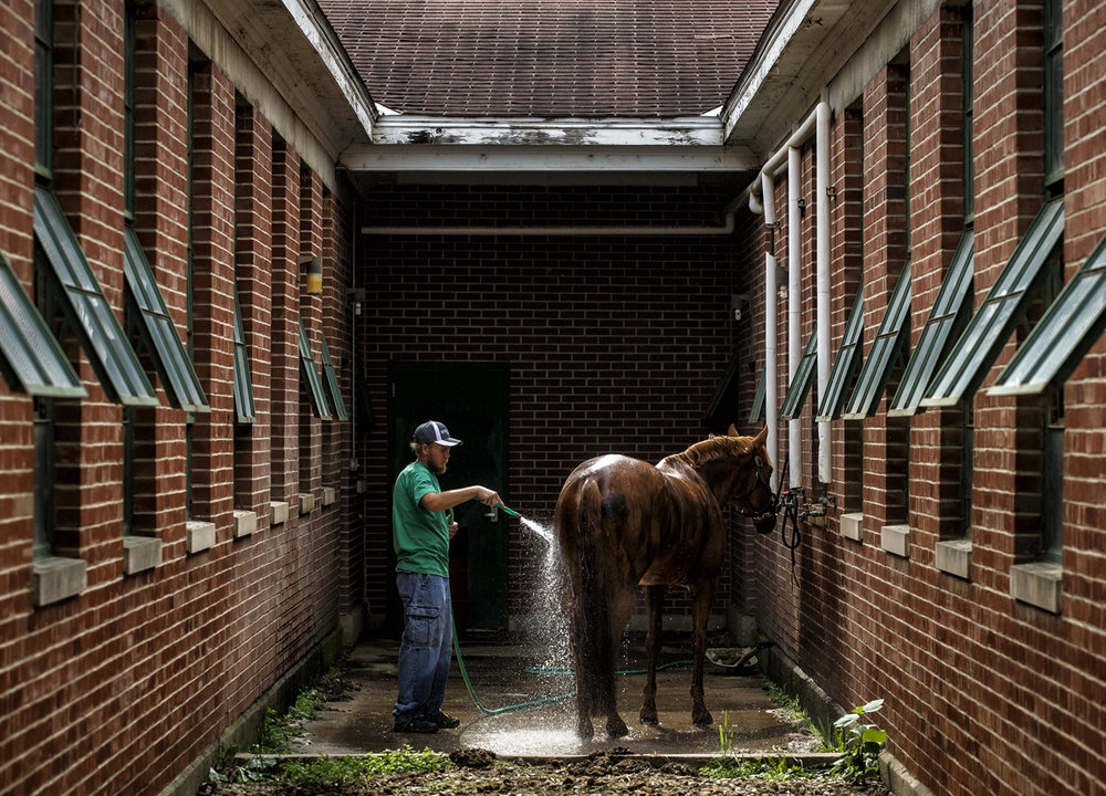Shade Oster, of Greenview, Ill., washes down Tucson, a quarter horse from Dowell Quarter Horses, after arriving at the horse barns in preparation for the Youth Charity Horse Show at the Illinois State Fairgrounds, Thursday, Oct. 6, 2016, in Springfield, Ill. The Youth Charity Horse Show runs from Oct. 7th through the 9th and benefits the Central Illinois Riding Therapy of Peoria Illinois. Justin L. Fowler/The State Journal-Register