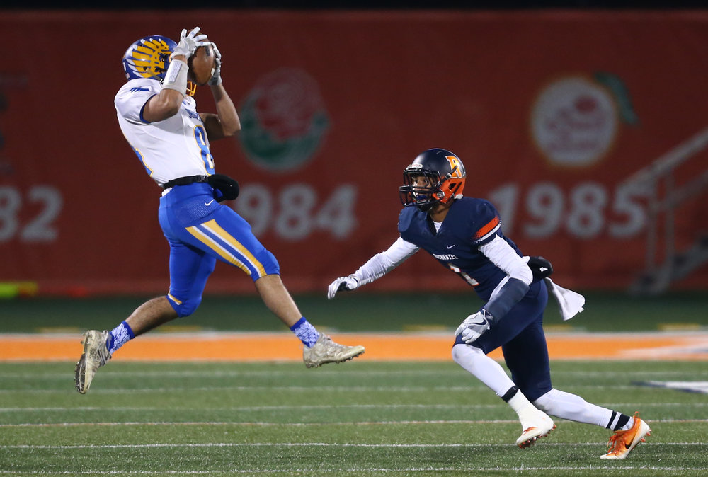 Johnsburg's Nico LoDolce (84) makes a leaping catch against \Rochester's D'Ante Cox (1) in the first quarter during the IHSA Class 4A State Championship at Memorial Stadium, Friday, Nov. 25, 2016, in Champaign, Ill. Justin L. Fowler/The State Journal-Register