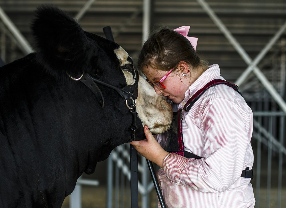 Grace Lemenager, 10, of Fairbury, gives Rizzo a kiss as she prepares to enter the show ring at the Illinois State Fair Friday, Aug. 12, 2016. Rizzo is a Simmental heifer.  Justin L. Fowler/The State Journal-Register