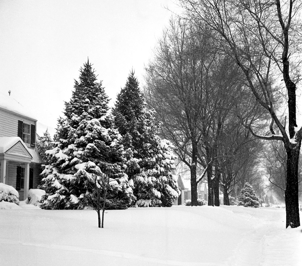 Springfield received 14.4 inches of snow on Feb. 24 and 25, 1964. File/The State Journal-Register