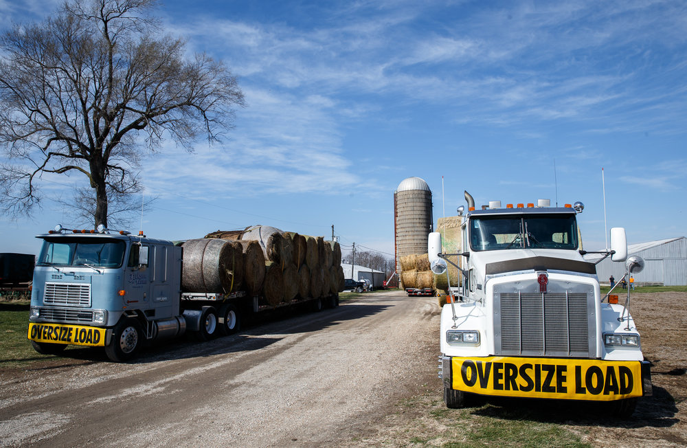 Semi-trailers loaded with bales of hay ready to depart from Jackson Farms after a donation drive by the Cass-Morgan Farm Bureau Young Leaders to aid the Kansas livestock farms devastated by wildfires, Friday, March 24, 2017, in Jacksonville, Ill. The hay and supplies donated from around central Illinois is being taken by convoy to aid the Kansas livestock farms devastated by wildfires. [Justin L. Fowler/The State Journal-Register]
