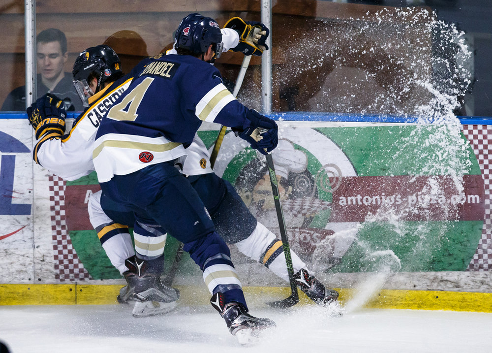 Janesville Jets' Alec Semandel (4) checks Springfield Jr. Blues' Matt Cassidy (18) into the boards in the first period at the Nelson Center, Tuesday, March 28, 2017, in Springfield, Ill. [Justin L. Fowler/The State Journal-Register]