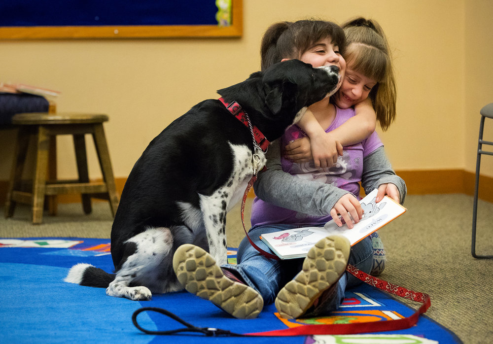Miranda Dowllar, left, gets a kiss from Jack, a certified therapy dog, and a hug from her sister Mackenzie during the Read to A Therapy Dog event at the Lincoln Library Monday, April 10, 2017. Jack's owner Carol Green rescued him as a four-month-old puppy from the Sangamon County Animal Control shelter and trained him as a therapy dog. [Ted Schurter/The State Journal-Register]