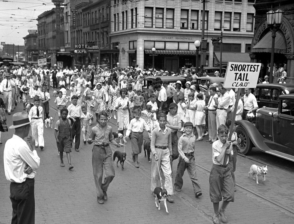 Dog Parade, Washington Street, north side of public square. pub. ISJ 6/22/1929, p. 16. Illinois State Journal glass plate negative/Sangamon Valley Collection at Lincoln Library C-98-777  VF 2000-57.