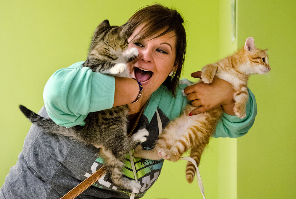 Amber Lavender laughs as she holds kittens Rocky, left, and Loki, at The Animal Protective League Friday, June 23, 2017. The shelter is celebrating Kittenfest this weekend and is reducing the adoption fees by half at their Taintor Road facility and also at events at PetSmart and Farm and Home Supply. Through their Better Together program, any pair of kittens from the same cage has one adoption fee waived. [Ted Schurter/The State Journal-Register]