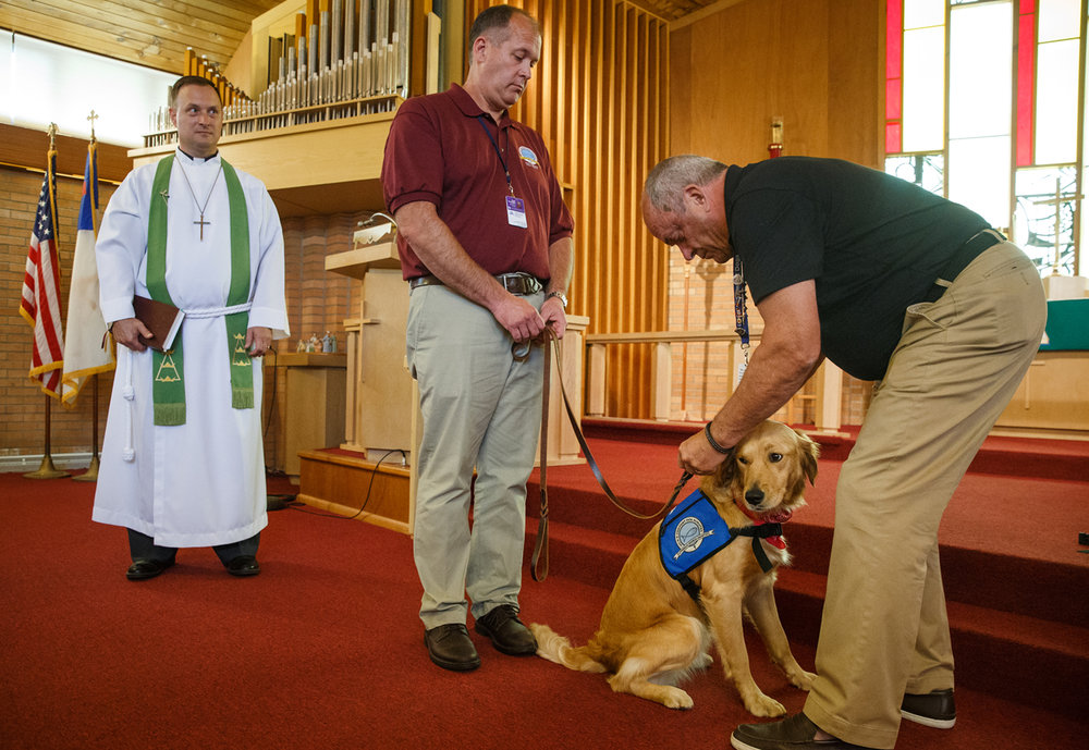 Dinah, a golden retriever with the Lutheran Church Charities' Comfort Dog Ministry, receives her official Comfort Dog vest from Richard Martin, right, director of K9 deployments with Lutheran Church Charities, with one of her handlers, Henry Barrington, center, during a Passing of the Leash ceremony overseen by Rev. Martin Kaufmann, left, at Trinity Lutheran Church, Sunday, July 2, 2017, in Auburn, Ill. Dinah joins a group of comfort dogs from around the country that visit disaster areas or communities that need a calming presence to those in need. [Justin L. Fowler/The State Journal-Register]