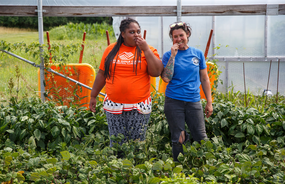 Tyra Redpath, 17, left, and Allana Reynolds, garden coordinator for Grow Springfield, sample a fresh green bean from the Teen Career Launch garden after finishing transplanting tomatoes with members of the Boys & Girls Clubs of Central Illinois at Lincoln Land Community College on Monday. For six weeks, students get hands-on experience in composting, planting seeds, harvesting and even cooking with fresh produce. [Justin L. Fowler/The State Journal-Register]