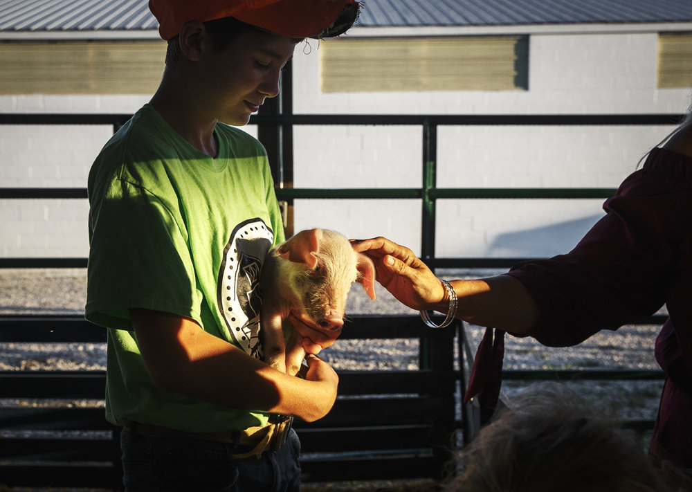 Brayden Wilson, 13, of Taylorville, Ill., gives fairgoers a chance to experience a piglet up close at Christian County's Interactive Farm during opening night of the Christian County Fair on the Christian County Fairgrounds, Tuesday, July 25, 2017, in Taylorville, Ill. [Justin L. Fowler/The State Journal-Register]