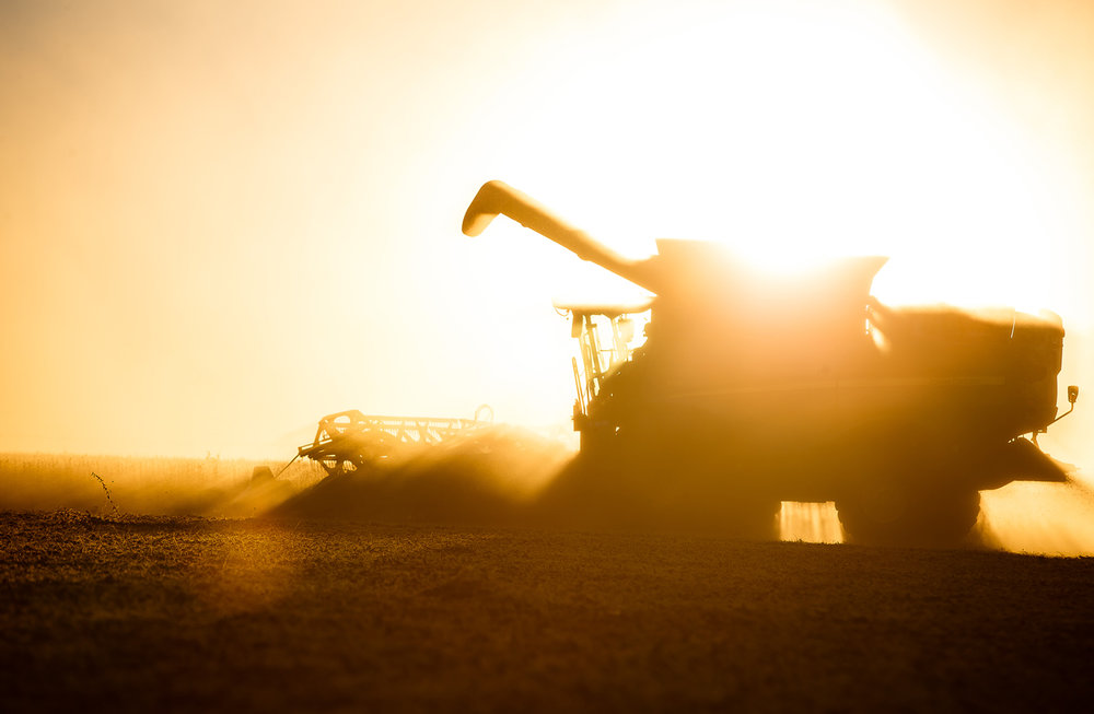 Martin Marr Jr. lines up another row of soybeans with a 40-foot draper head as dust from a dry summer surrounds the combine as he repeats the process from the path he just came from with the sun setting on farmland along Pleasant Plains Road, Thursday, Sept. 28, 2017, north of New Berlin, Ill. Martin Marr Jr. joins his father Marty Marr Sr. and his brother Evan Marr as they each play a role in the soybean and corn harvest while the weather stays favorable for harvesting. [Justin L. Fowler/The State Journal-Register]