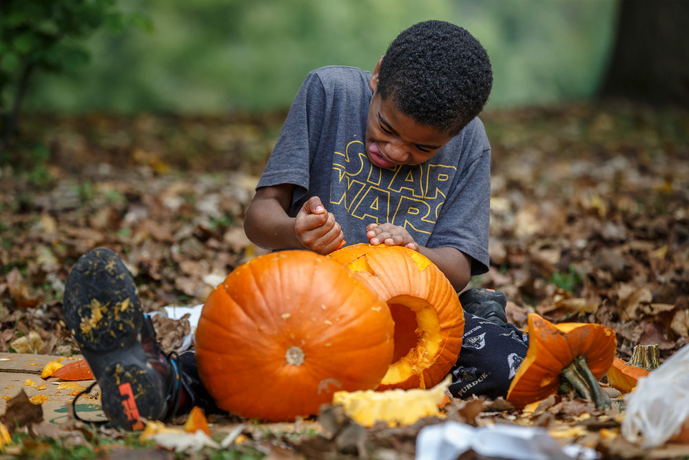 Demarceon Swanson, 8, lines up a safety knife to provide his pumpkin with a set of teeth during the Carve for the Carillon at the Thomas Rees Memorial Carillon for next week's Jack-O-Lantern Spectacular at Washington Park, Saturday, Oct. 14, 2017, in Springfield, Ill. According to organizers there were 1000 pumpkins carved and they ran out of pumpkins for the first time on a Saturday for the event. More pumpkins will be available on Sunday when the event continues at 11 a.m. to 4 p.m. tomorrow. [Justin L. Fowler/The State Journal-Register]