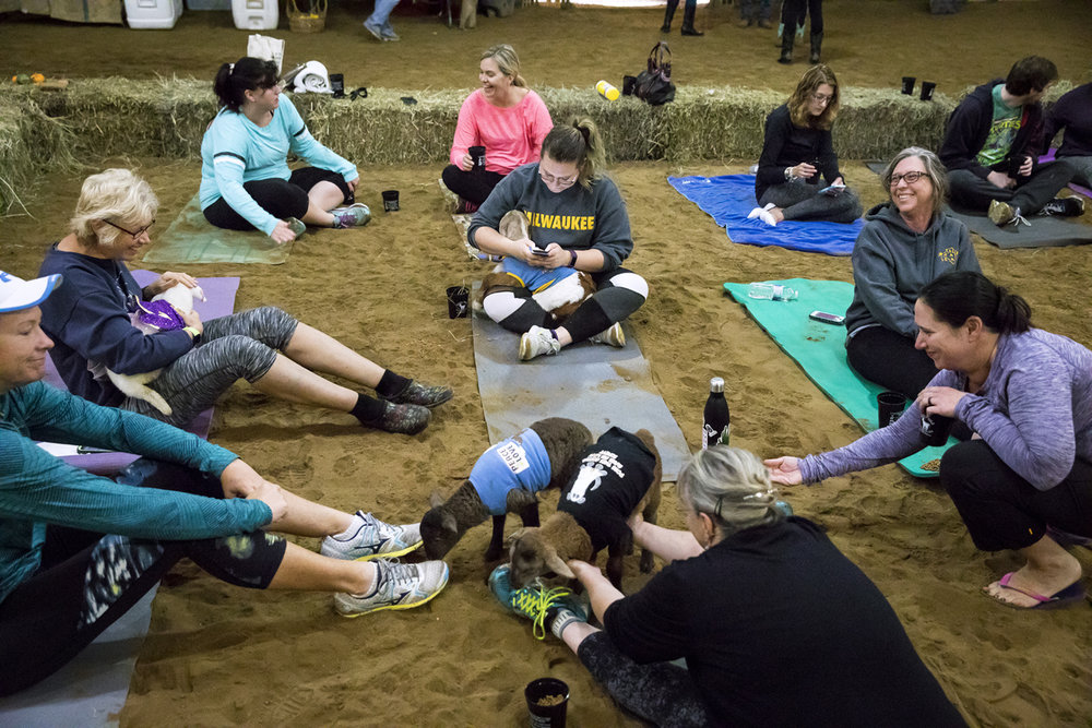 Participants in a yoga class with goats take time before the class begins to mingle with the special guests Sunday, Oct. 22, 2017 at Willow City Farm near Cantrall. [Rich Saal/The State Journal-Register]