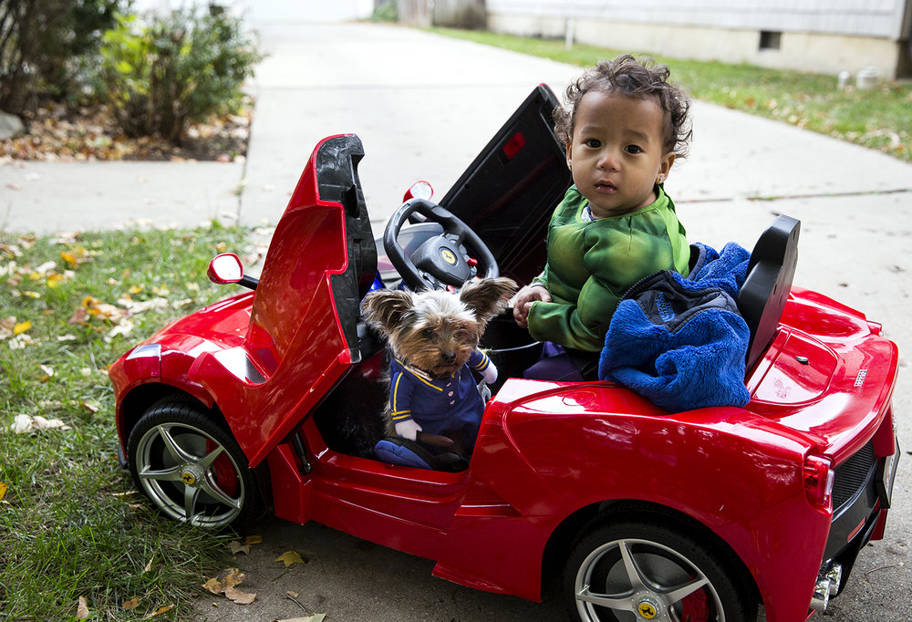 Tour Murray, Jr., 1 year-old, and his family's Yorkie pup, Gucci, did trick or treating in style Tuesday, Oct. 31, 2017, riding in a battery-powered Ferrari operated by his dad, Tour, during Halloween festivities on South Glenwood Avenue. [Rich Saal/The State Journal-Register]