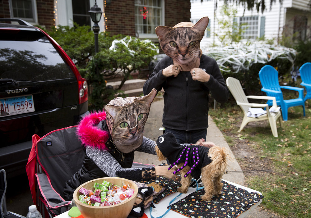 Heidi and Keith Voegele don their cat masks while they prepare for trick or treaters outside their home on South Glenwood Avenue Tuesday, Oct. 31, 2017. [Rich Saal/The State Journal-Register]