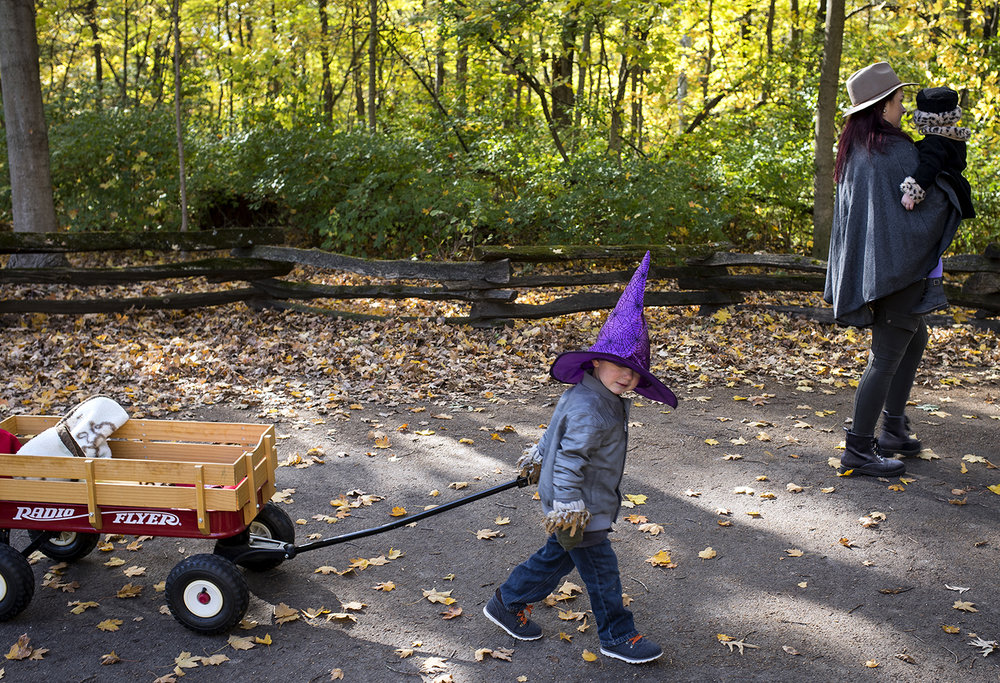 Otto Hoffman pitches in to help pull the wagon he and his sister Harlow had been riding in during an outing at Lincoln's New Salem State Historic Site Sunday, Oct. 29, 2017 with their mother, Madeleine, right. In the spirit of Halloween, Otto wore parts from two of his favorite costumes, scarecrow hands and a witch's hat.  [Rich Saal/The State Journal-Register]