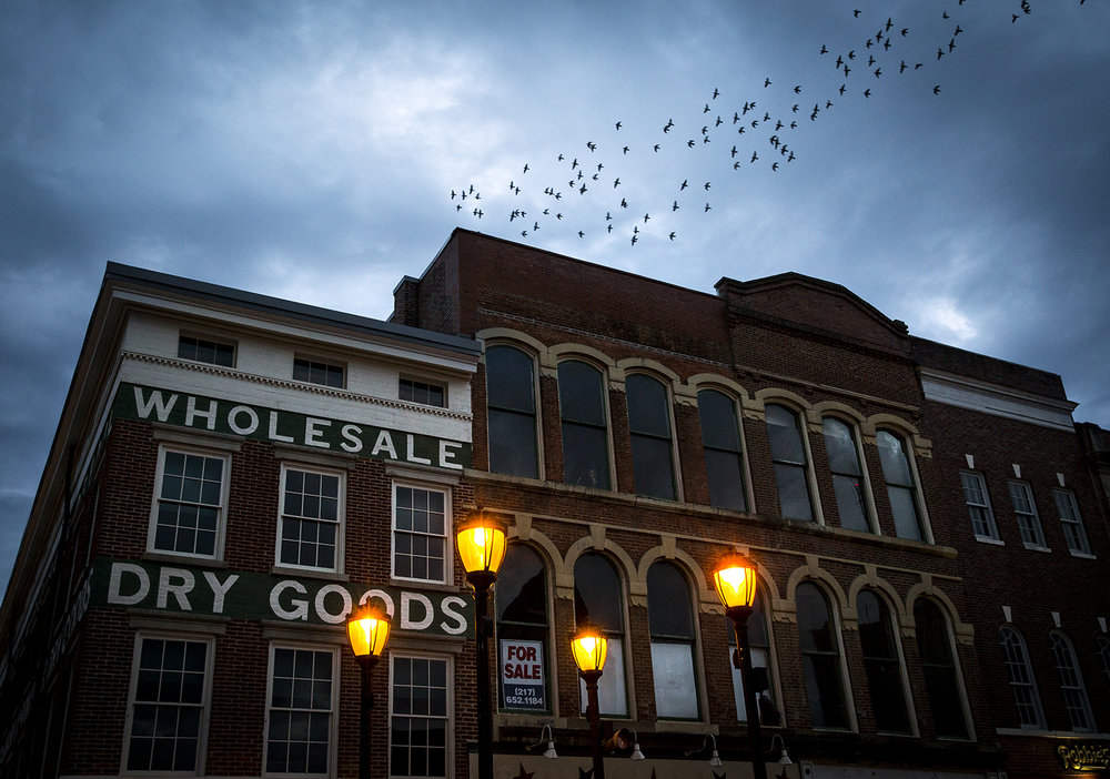 In the dusk light, pigeons fly over the south side of the Old Capitol Plaza Tuesday, Nov. 14, 2017, in Springfield, Ill. [Rich Saal/The State Journal-Register]