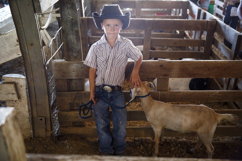 Levi Cook, 6, waits his turn to show his family's goat, Nellie, in the milk goat judging on opening day of the Menard County Fair July 18 in Petersburg. Levi and Nellie took home a white ribbon, third place. Rich Saal/The State Journal-Register