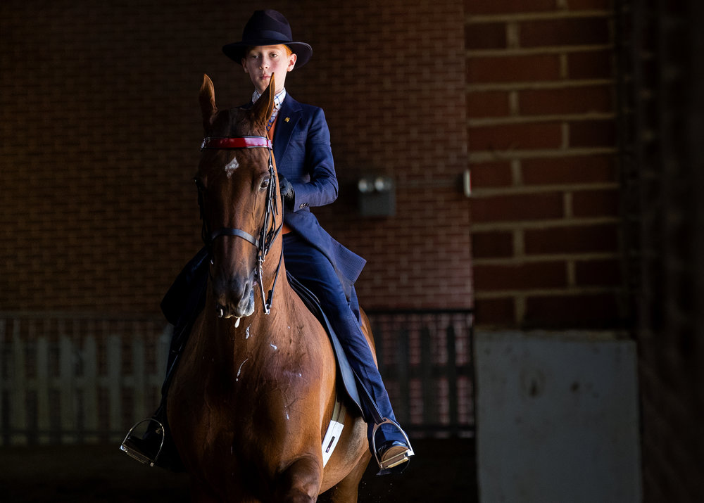 Richie Dallen warms up his American Saddlebred Miss Mheiry Mac before competing in Saddle Seat Equitation Walk/Trot 10 and Under during the 77th Annual Midwest Charity Horse Show at the Illinois State Fairgrounds Friday, June 15, 2018. The show concludes today with competitions at 10:30 a.m. and 6:30 p.m. [Ted Schurter/The State Journal-Register]