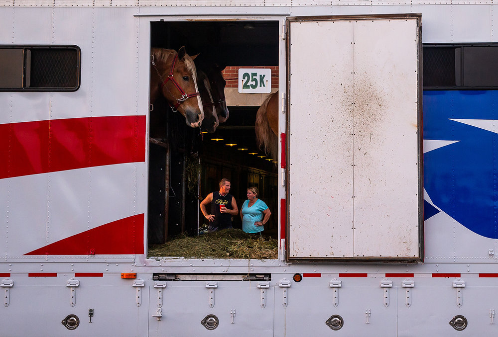 Belgian draft horses from Rees Family Belgians out of Elk, Washington, wait to get unloaded next to the barns along Central Avenue after a three day trip to make it to the Illinois State Fair on the Illinois State Fairgrounds, Friday, Aug. 10, 2018, in Springfield, Ill. The Rees Family Belgians are run by three generations of the Rees family and they travel to the midwest to show their Belgians as there aren't many opportunities to show them in Washington.  [Justin L. Fowler/The State Journal-Register]