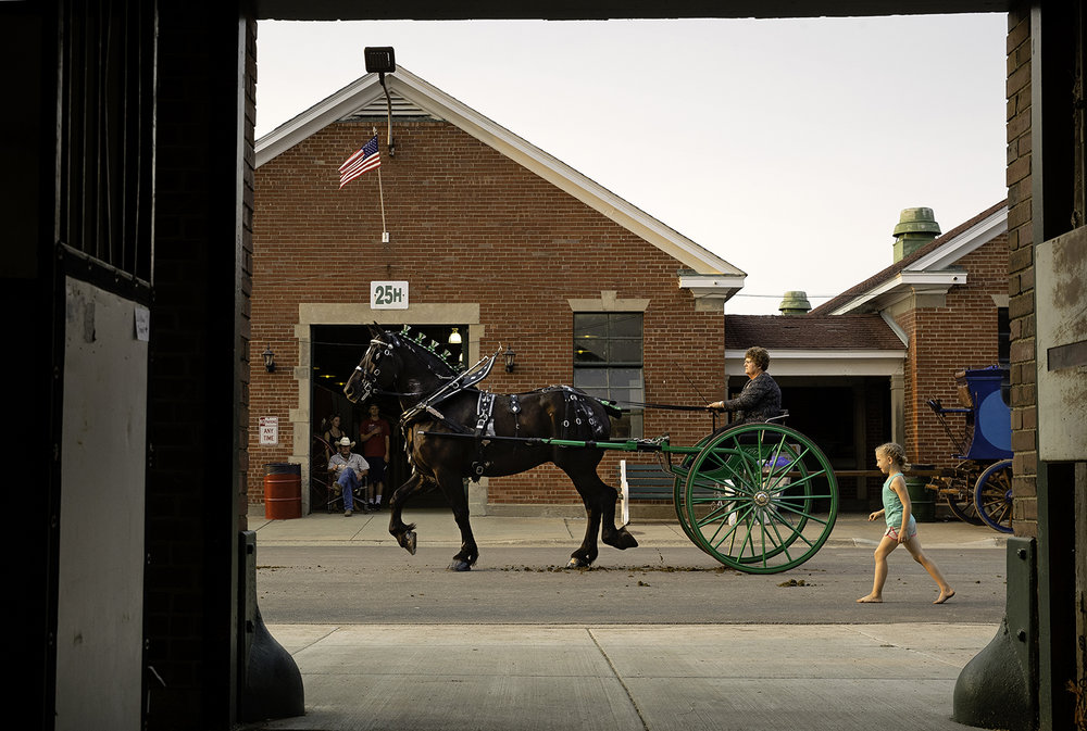 A draft horse and cart make their way down the street after competing in the Enclosed Arena at the Illinois State Fair Monday, Aug. 13, 2018. [Ted Schurter/The State Journal-Register]