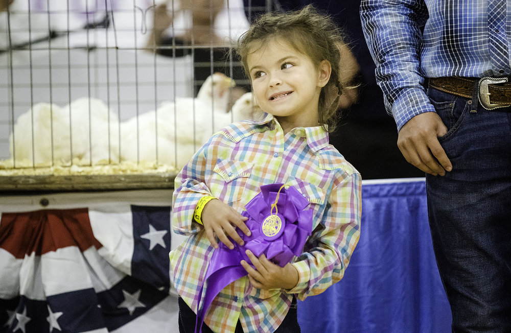 Caroline Elders does her best to keep her smile pasted on as her brother Grant Wilderman's Poultry Market Pen is auctioned off during the Governor's Sale of Champions at the Livestock Center at the Illinois State Fair Tuesady, Aug. 14, 2018. [Ted Schurter/The State Journal-Register]