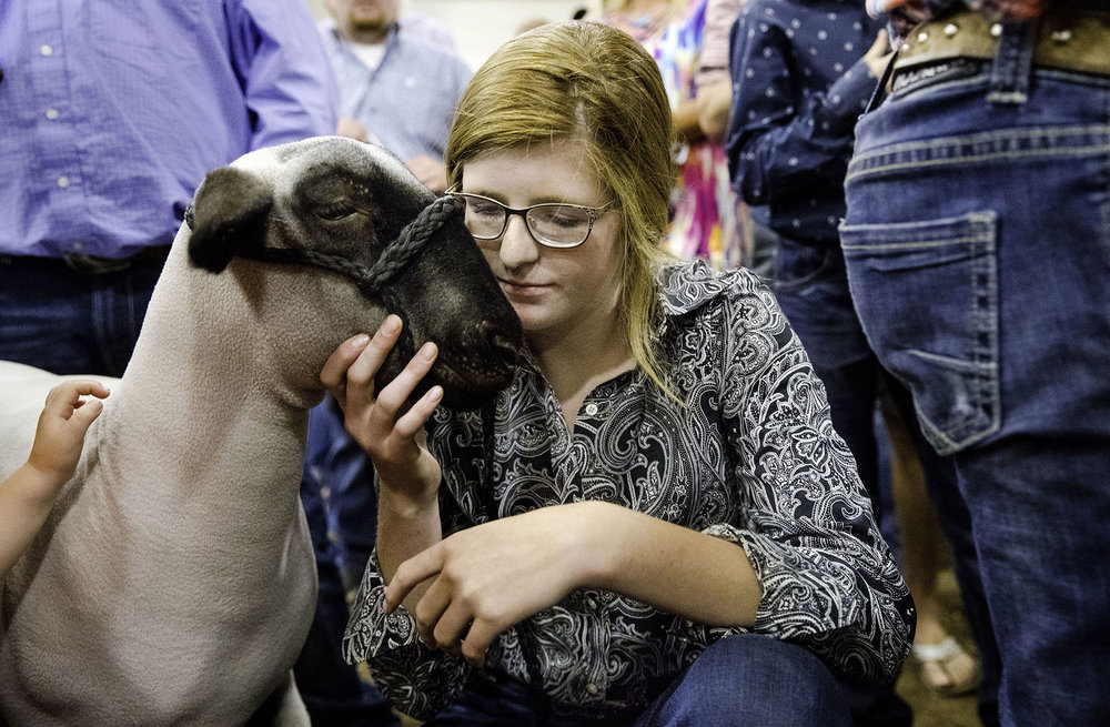 Olivia Caldwell crouches down to say hello to Buster, her Land of Lincoln Grand Champion Wether, as she waits to auction him off during the Governor's Sale of Champions at the Livestock Center at the Illinois State Fairgrounds Tuesday, Aug. 14, 2018. [Ted Schurter/The State Journal-Register]